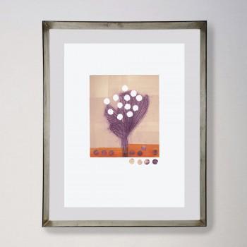 Flores y semillas I 2