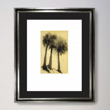 Entre árboles 2