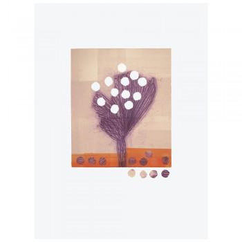 Flores y semillas I